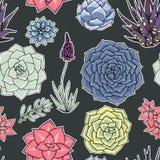 Succulents naadloos patroon Succulent ornament Royalty-vrije Stock Foto's