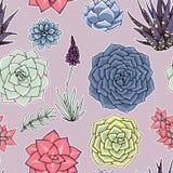 Succulents naadloos patroon Succulent ornament Stock Afbeelding