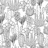 Succulents plant vector seamless pattern Stock Images