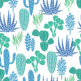 Succulents plant vector seamless pattern Royalty Free Stock Images