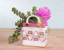 Succulents planted in a colorful ceramic bag Stock Images