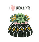 Succulents in the pot in scandinavian style with text `I love succulents`. Home decoration. Vector illustration. Stock Images
