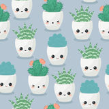 Succulents seamless wallpaper Stock Images