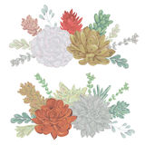 Succulents set. Collection decorative floral design elements for wedding invitations and birthday cards. Royalty Free Stock Photo