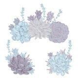 Succulents set. Collection decorative floral design elements for wedding invitations  Stock Photos