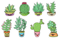 Succulents  set. Cute cartoon cactuses and succulents with funny faces on pots Vector set with eight objects isolated on white backgrounds. Can be used for cards Royalty Free Stock Photo