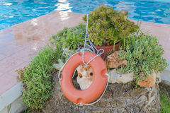 Succulents, stones and lifebuoys on the side of the pool Stock Photo