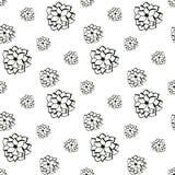 Succulents zwart-wit vector naadloos patroon Royalty-vrije Stock Afbeeldingen