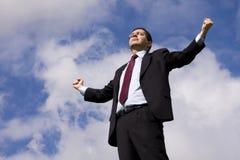 Sucessful businessman Stock Photos