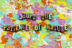 Sucesso do processo do ambiente da natureza da paciência foto de stock
