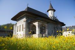 Sucevita kloster Royaltyfria Bilder