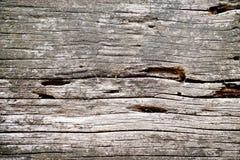 Sucfacen av trä Arkivfoto