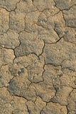 sucha borowinowa tekstura Zdjęcie Royalty Free
