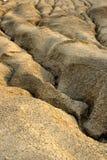 sucha borowinowa tekstura Zdjęcia Stock