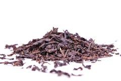 sucha czerń herbata Zdjęcia Stock