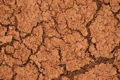 Sucha czerwień pękający zmielony tło Obraz Royalty Free