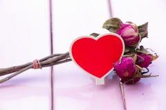 Sucha czerwieni róża Obraz Royalty Free
