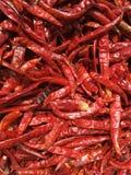 Sucha czerwona chili tekstura Fotografia Stock
