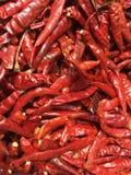Sucha czerwona chili tekstura Obraz Stock