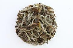 Sucha herbata Fotografia Stock