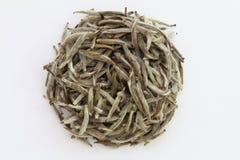 Sucha herbata Zdjęcia Royalty Free