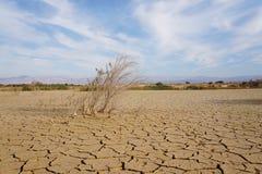 Sucha i łamana ziemia obrazy stock