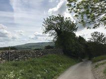 Sucha kamienna ściana Wensleydale Yorkshire zdjęcia stock