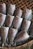 sucha kosz ryba Obrazy Royalty Free