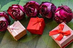 Sucha menchia kwitnie, zaskakuje, r??e, textured t?o, kobiet przyj?cia, i prezenty Herbarium przy pami?ci? obraz stock