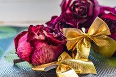 Sucha menchia kwitnie, zaskakuje, r??e, textured t?o, kobiet przyj?cia, i prezenty Herbarium przy pami?ci? zdjęcie stock
