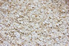 Sucha oatmeal owsianka Zdjęcia Stock