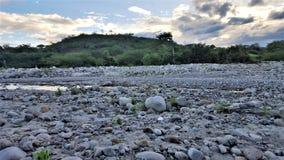 Sucha rzeka w lecie Zdjęcie Royalty Free