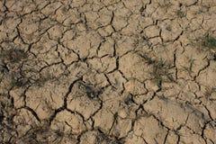 sucha suszy ziemia Zdjęcia Stock