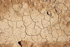 sucha ziemia Zdjęcie Royalty Free