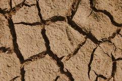sucha ziemia Fotografia Stock