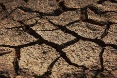 sucha ziemia Obraz Royalty Free
