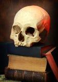 Suche des Wissenskonzeptes Lizenzfreies Stockbild