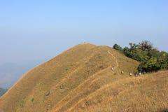 suche góry Zdjęcie Stock