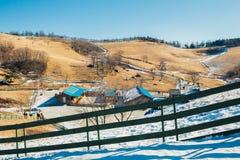 Suchej trawy pole, góra, śnieg i zima krajobraz w Daegwallyeong baranim rancho, Korea Zdjęcia Royalty Free