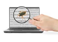 Suchen nach Computerwanze Lizenzfreie Stockfotografie