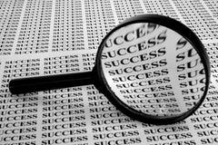 Suchen nach Erfolg Lizenzfreie Stockfotografie