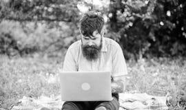 Suchen nach Inspiration Blogger, der von Natur aus angespornt wird Der Mann, der mit Laptop b?rtig ist, sitzen Wiesennaturhinterg lizenzfreie stockfotos