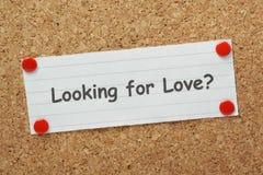 Suchen nach Liebe? Stockbild