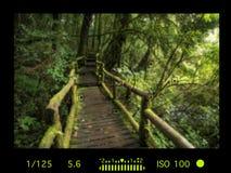 Sucherkamera mit Informationsanzeige Schöne grüne Landschaft Lizenzfreies Stockbild