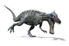 Suchomimus恐龙 免版税库存照片