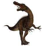 Suchomimus 01 Royalty Free Stock Images