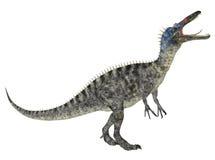 Suchomimus Stock Photos