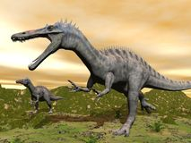 Suchomimus dinosaurs - 3D render Stock Photos