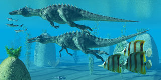 Suchomimus Dive. Two Suchomimus dinosaurs dive and search for big fish prey to capture and eat Stock Images