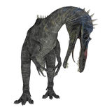 Suchomimus Tenerensis Stock Photo